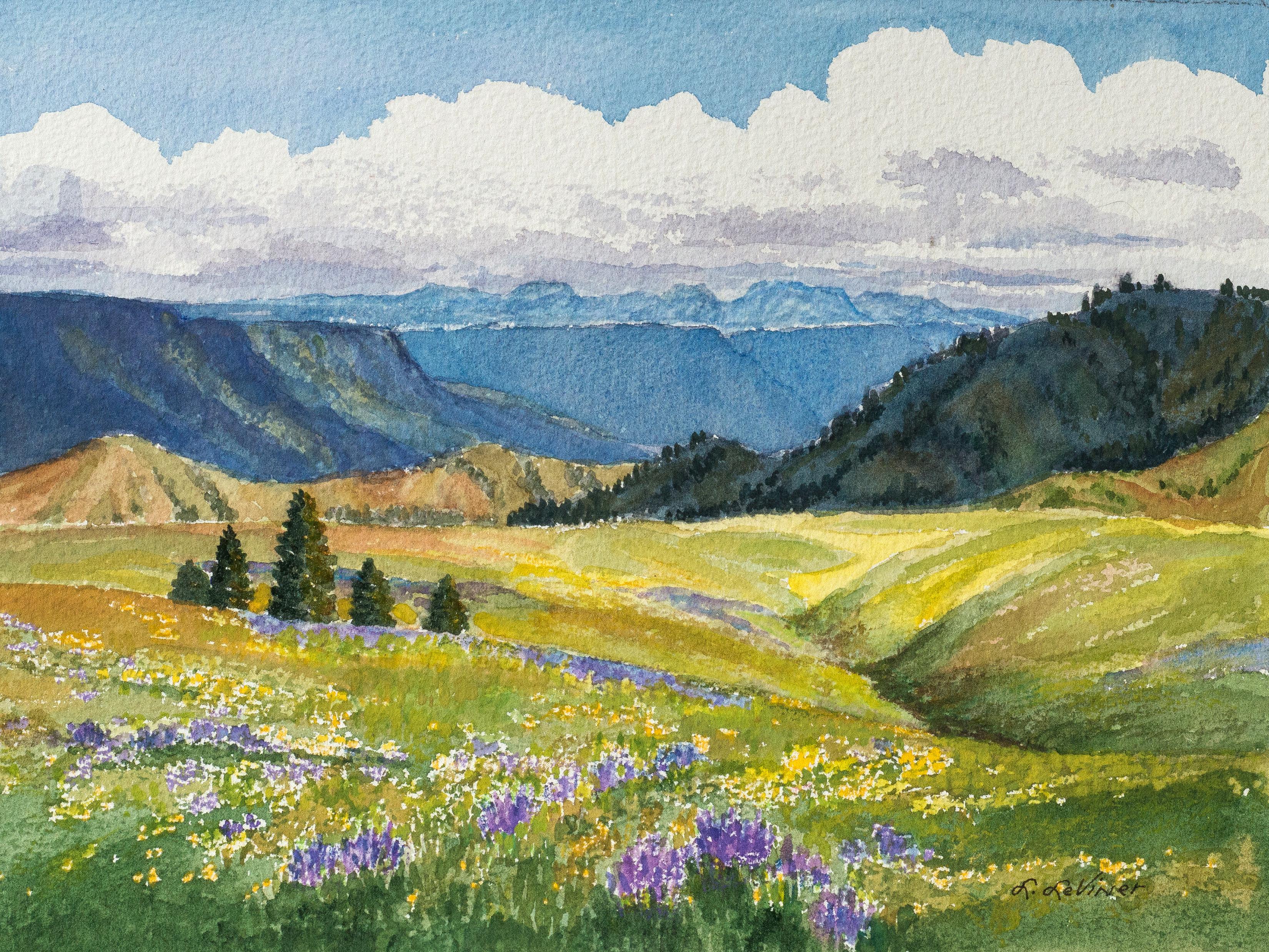 The Wild Landscape Art And Words Of The Zumwalt Prairie